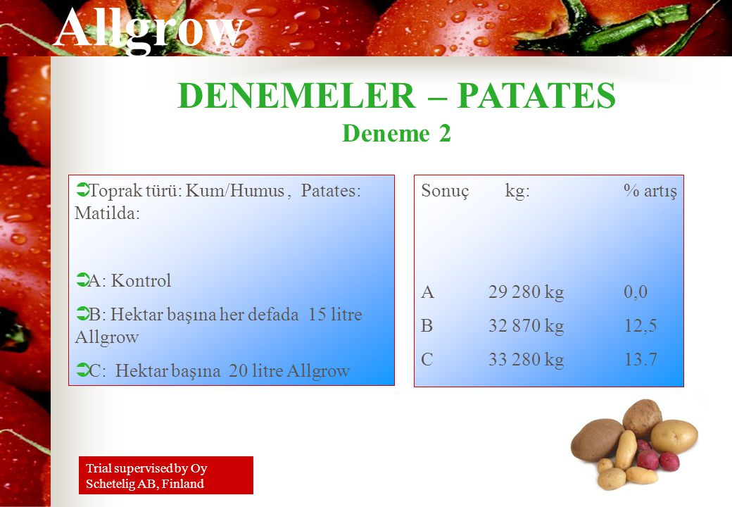 Allgrow DENEMELER – PATATES Deneme 2 Sonuç kg: % artış A29 280 kg0,0 B32 870 kg12,5 C33 280 kg13.7  Toprak türü: Kum/Humus, Patates: Matilda:  A: Kontrol  B: Hektar başına her defada 15 litre Allgrow  C: Hektar başına 20 litre Allgrow Trial supervised by Oy Schetelig AB, Finland