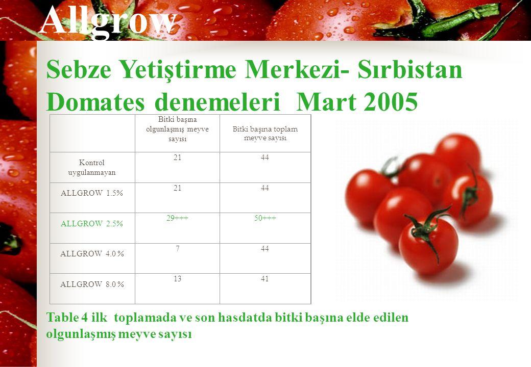 Allgrow Sebze Yetiştirme Merkezi- Sırbistan Domates denemeleri Mart 2005 Bitki başına olgunlaşmış meyve sayısı Bitki başına toplam meyve sayısı Kontro