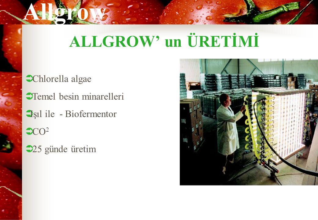 Allgrow ALLGROW' un ÜRETİMİ  Chlorella algae  Temel besin minarelleri  Işıl ile - Biofermentor  CO 2  25 günde üretim