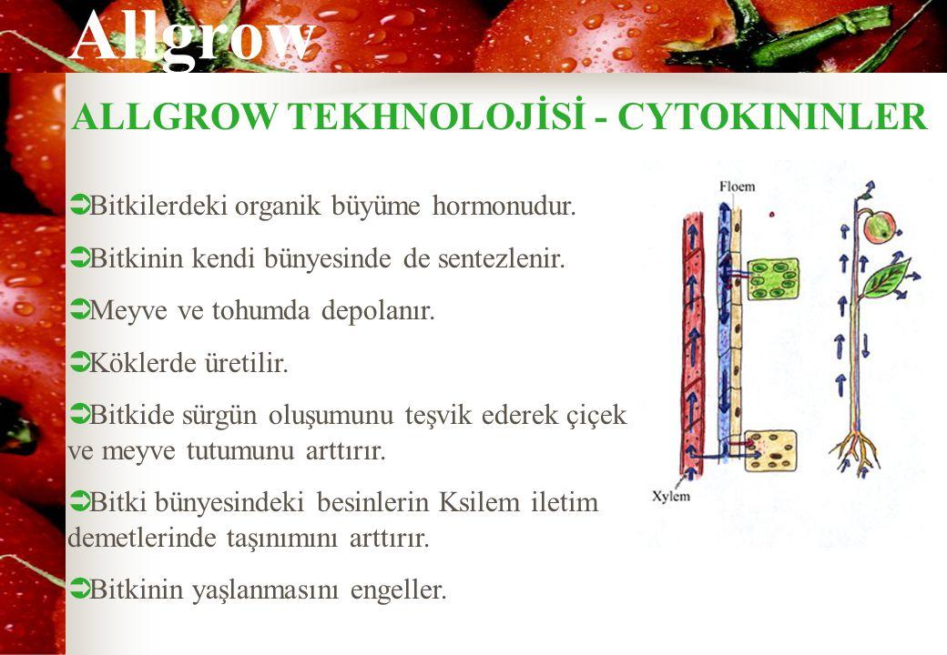 Allgrow ALLGROW TEKHNOLOJİSİ - CYTOKININLER  Bitkilerdeki organik büyüme hormonudur.  Bitkinin kendi bünyesinde de sentezlenir.  Meyve ve tohumda d