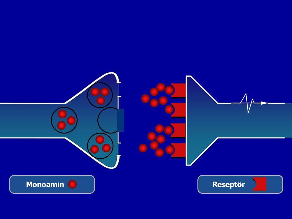 MonoaminReseptör