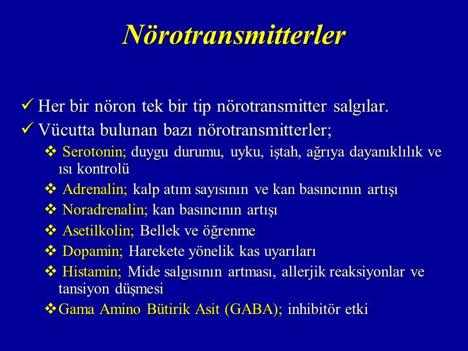 Nörotransmitterler Her bir nöron tek bir tip nörotransmitter salgılar.