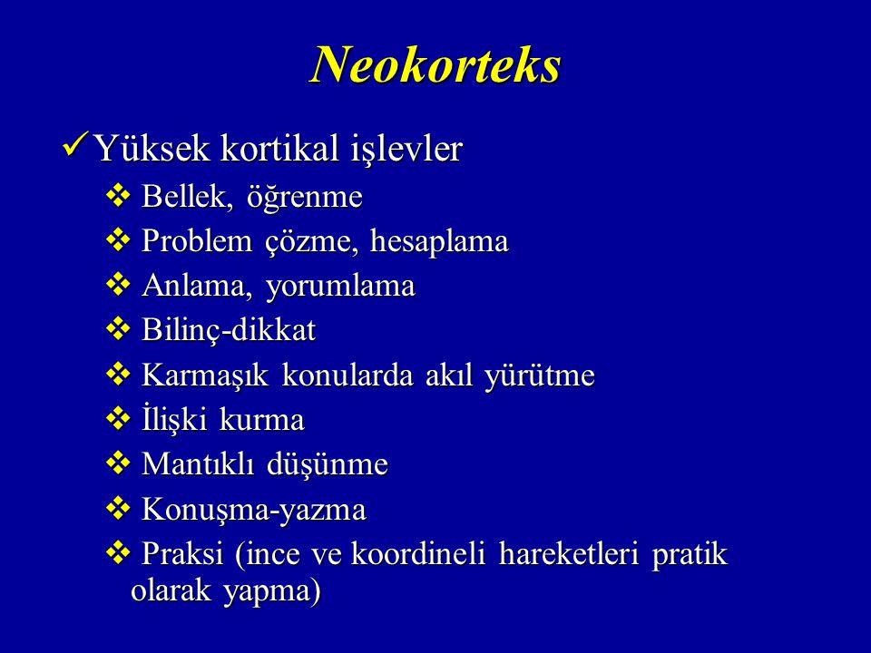 Neokorteks Yüksek kortikal işlevler Yüksek kortikal işlevler  Bellek, öğrenme  Problem çözme, hesaplama  Anlama, yorumlama  Bilinç-dikkat  Karmaşık konularda akıl yürütme  İlişki kurma  Mantıklı düşünme  Konuşma-yazma  Praksi (ince ve koordineli hareketleri pratik olarak yapma)