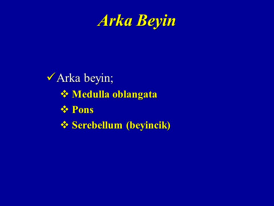 Arka Beyin Arka beyin; Arka beyin;  Medulla oblangata  Pons  Serebellum (beyincik)
