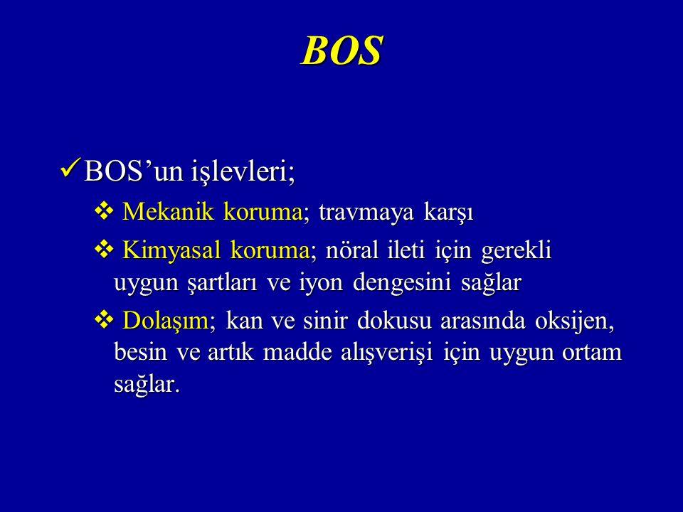 BOS BOS'un işlevleri; BOS'un işlevleri;  Mekanik koruma; travmaya karşı  Kimyasal koruma; nöral ileti için gerekli uygun şartları ve iyon dengesini sağlar  Dolaşım; kan ve sinir dokusu arasında oksijen, besin ve artık madde alışverişi için uygun ortam sağlar.
