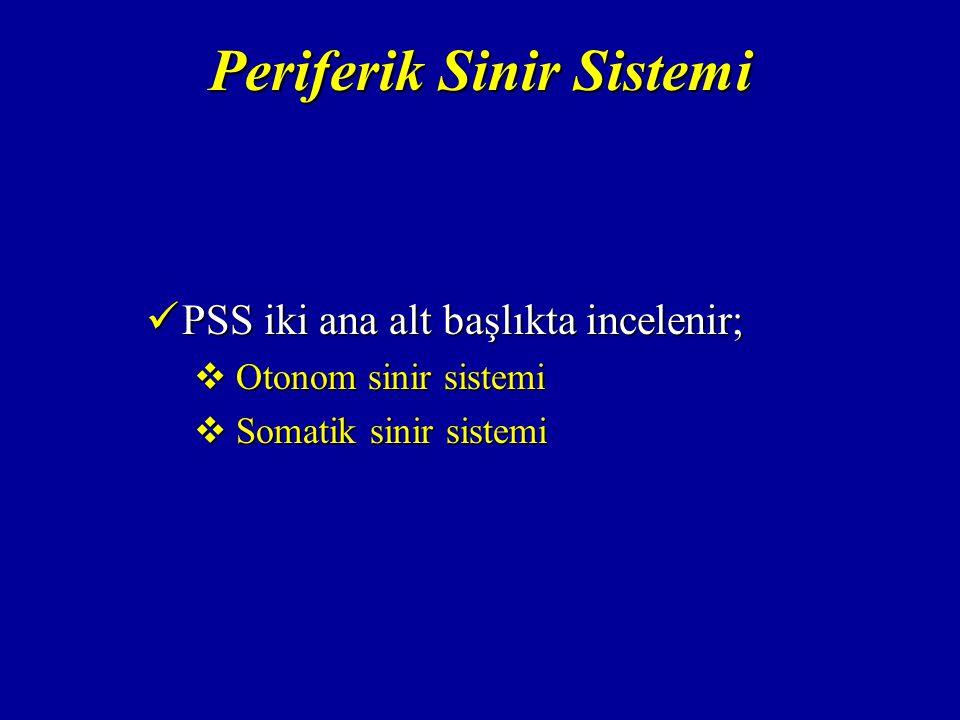 Periferik Sinir Sistemi PSS iki ana alt başlıkta incelenir; PSS iki ana alt başlıkta incelenir;  Otonom sinir sistemi  Somatik sinir sistemi