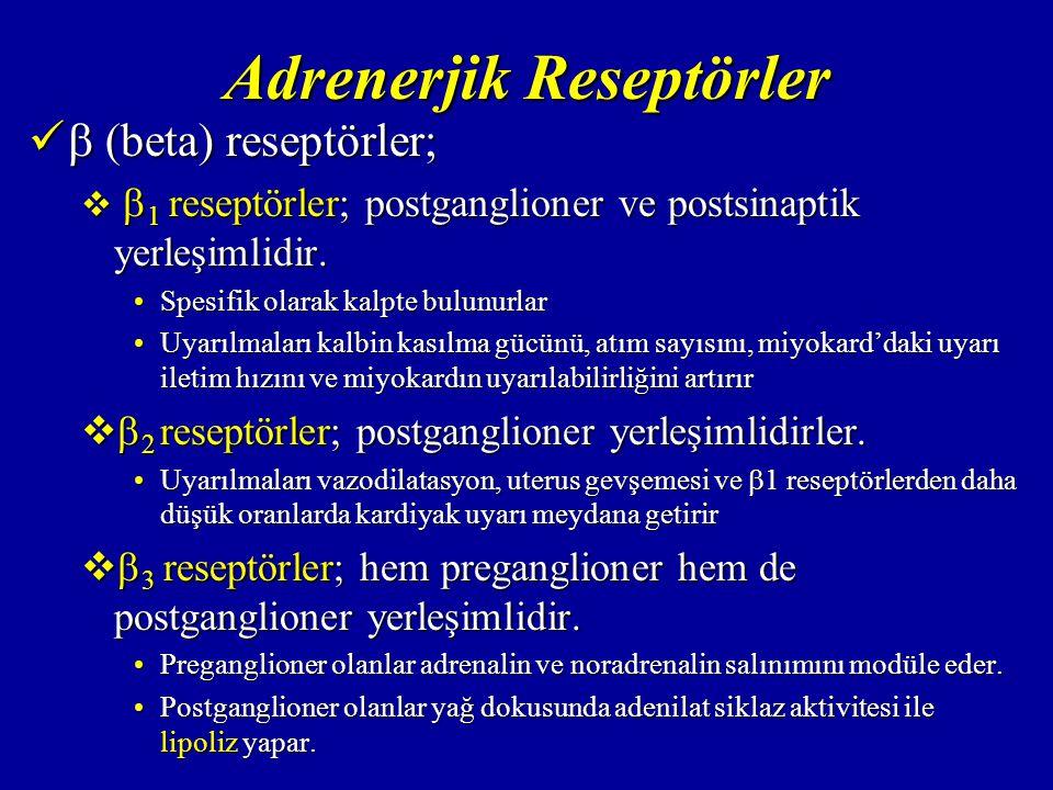 Adrenerjik Reseptörler  (beta) reseptörler;  (beta) reseptörler;   1 reseptörler; postganglioner ve postsinaptik yerleşimlidir.