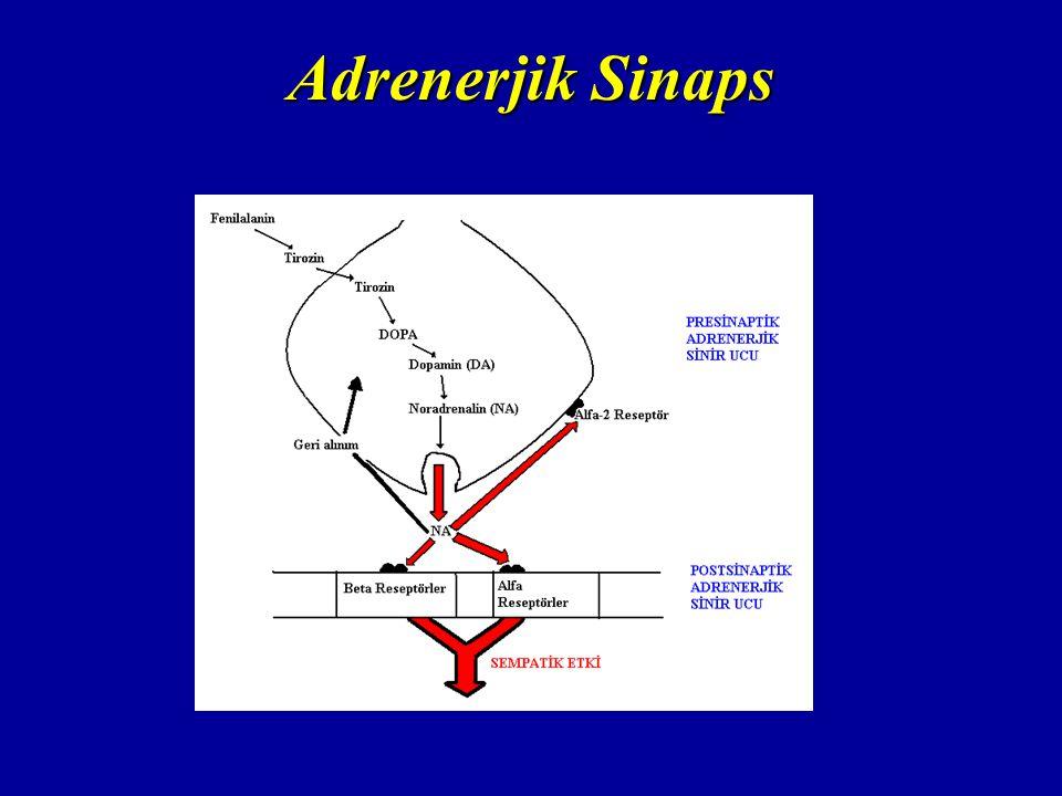 Adrenerjik Sinaps