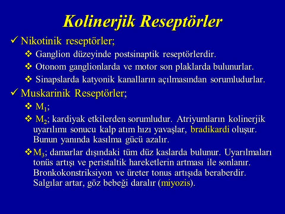 Kolinerjik Reseptörler Nikotinik reseptörler; Nikotinik reseptörler;  Ganglion düzeyinde postsinaptik reseptörlerdir.