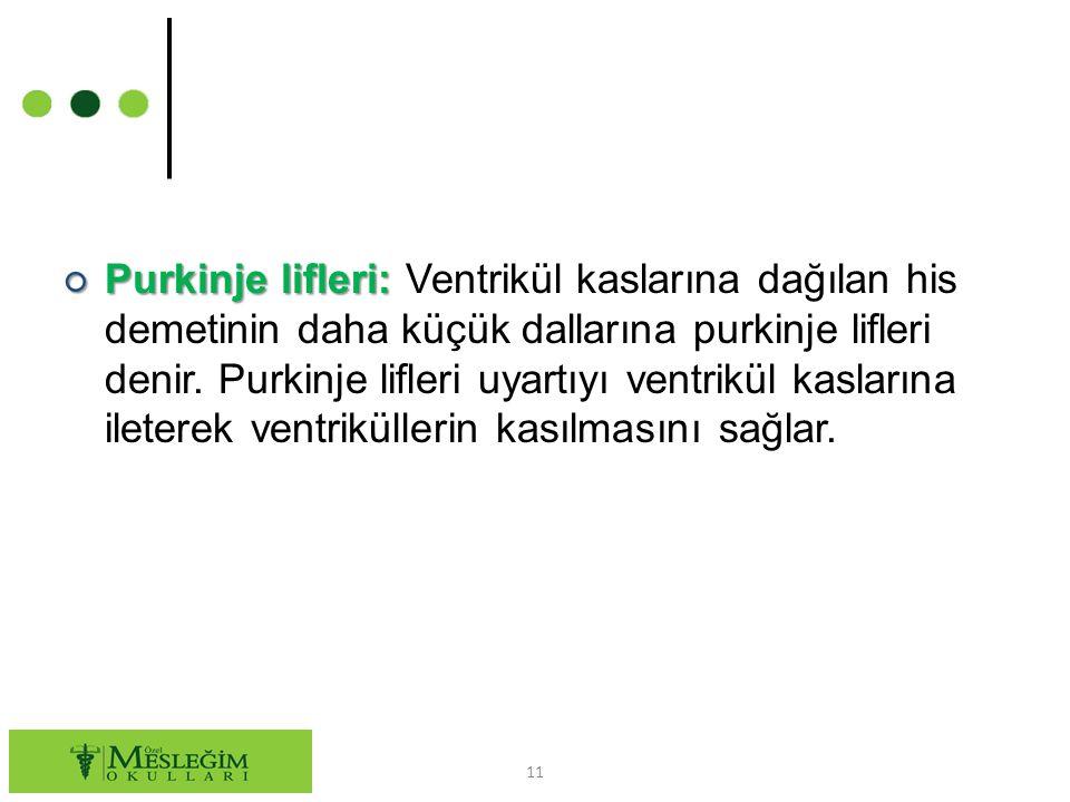 ○ Purkinje lifleri: ○ Purkinje lifleri: Ventrikül kaslarına dağılan his demetinin daha küçük dallarına purkinje lifleri denir.