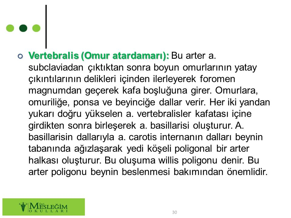 ○ Vertebralis (Omur atardamarı): ○ Vertebralis (Omur atardamarı): Bu arter a.