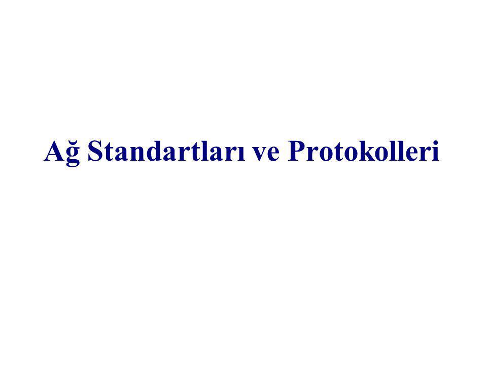 Plan Ağ Standartları ve Protokolleri