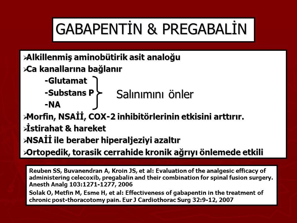 GABAPENTİN & PREGABALİN  Alkillenmiş aminobütirik asit analoğu  Ca kanallarına bağlanır -Glutamat -Glutamat -Substans P -Substans P -NA -NA  Morfin