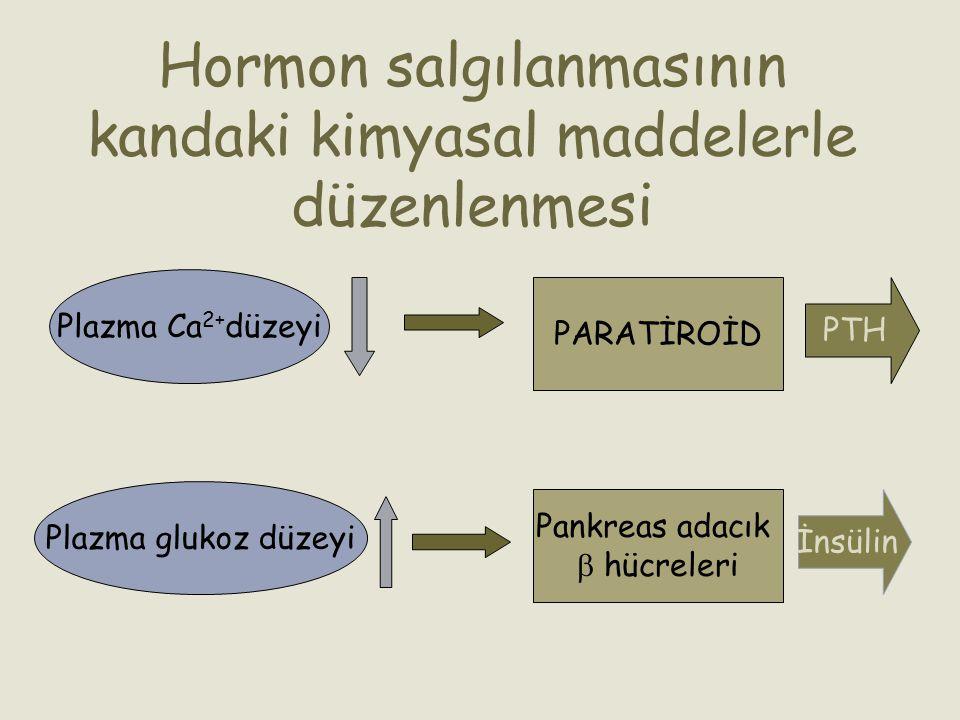 Hormon salgılanmasının kandaki kimyasal maddelerle düzenlenmesi Plazma Ca 2+ düzeyi PARATİROİD PTH Plazma glukoz düzeyi Pankreas adacık  hücreleri İn