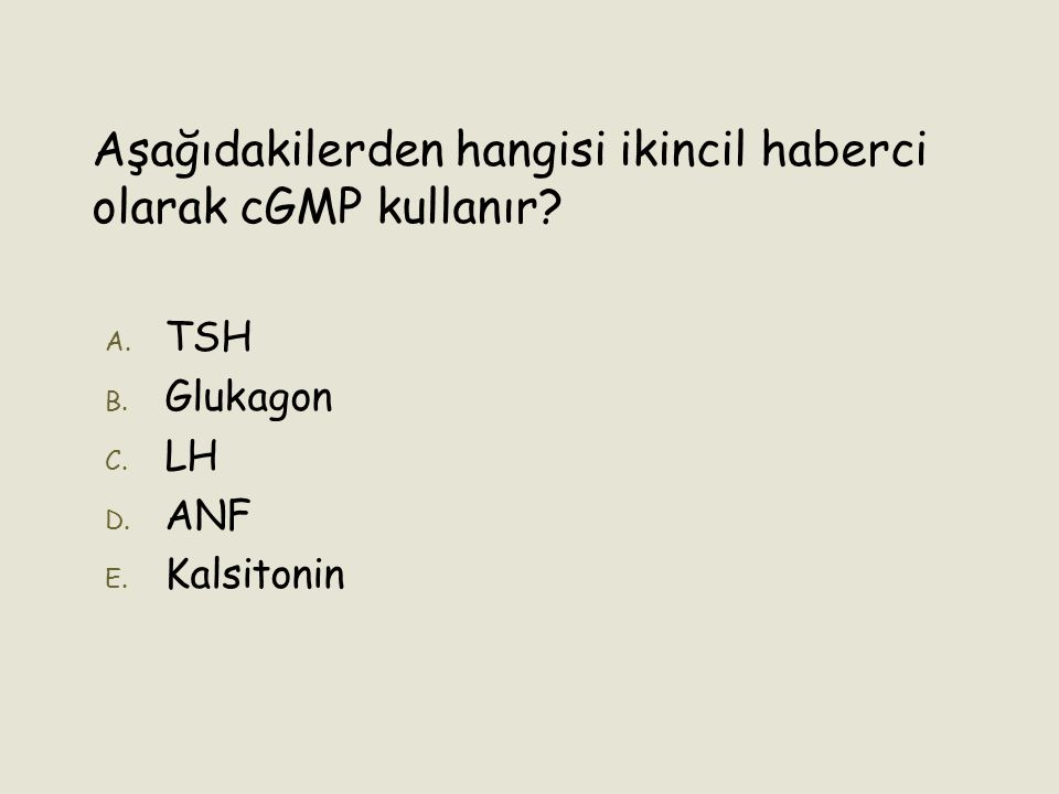 Aşağıdakilerden hangisi ikincil haberci olarak cGMP kullanır? A. A. TSH B. B. Glukagon C. C. LH D. D. ANF E. E. Kalsitonin