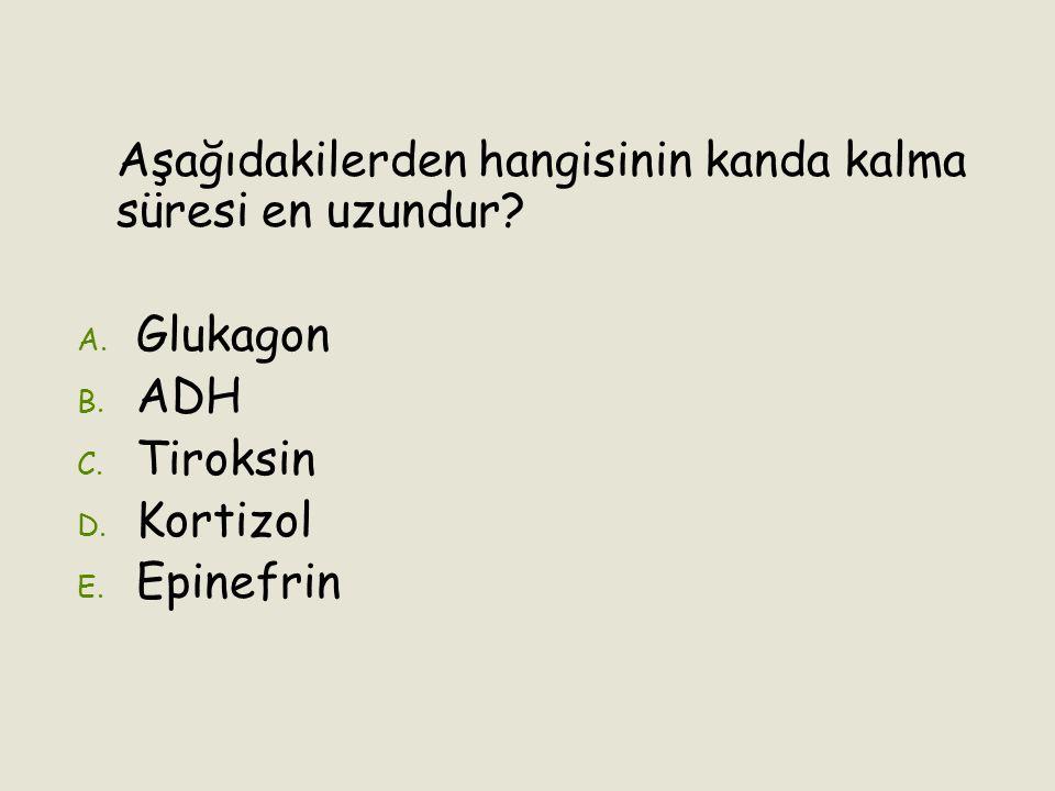Aşağıdakilerden hangisinin kanda kalma süresi en uzundur? A. A. Glukagon B. B. ADH C. C. Tiroksin D. D. Kortizol E. E. Epinefrin