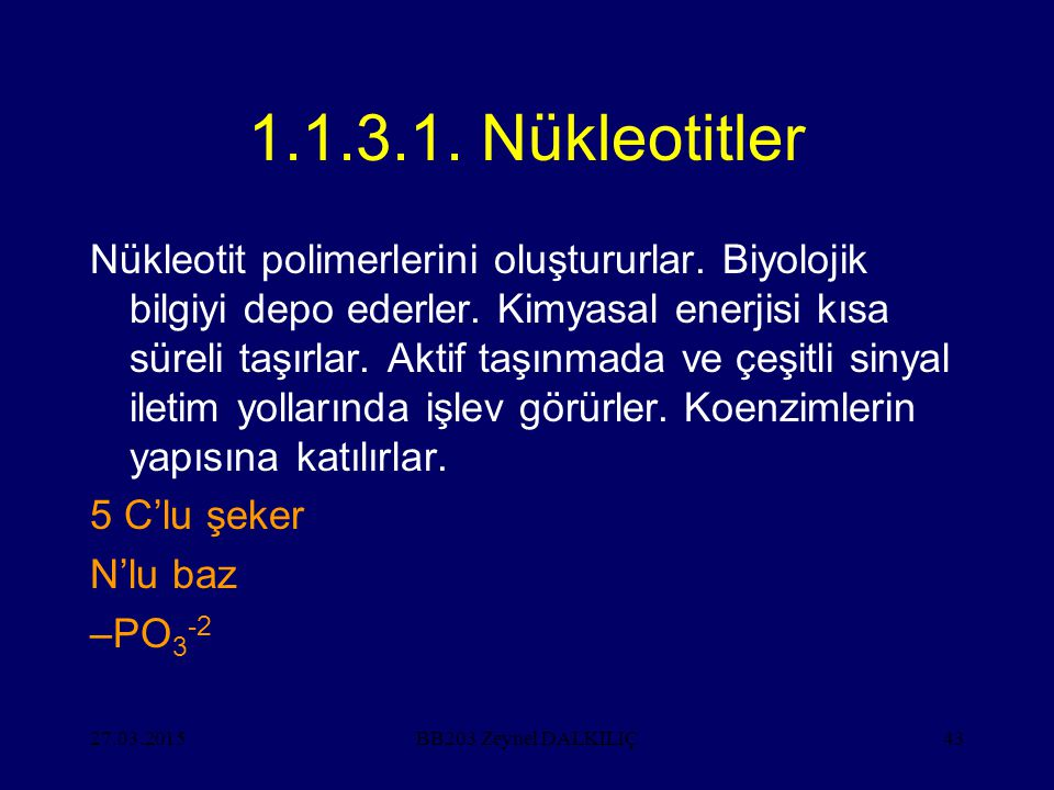 27.03.201543 1.1.3.1. Nükleotitler Nükleotit polimerlerini oluştururlar. Biyolojik bilgiyi depo ederler. Kimyasal enerjisi kısa süreli taşırlar. Aktif