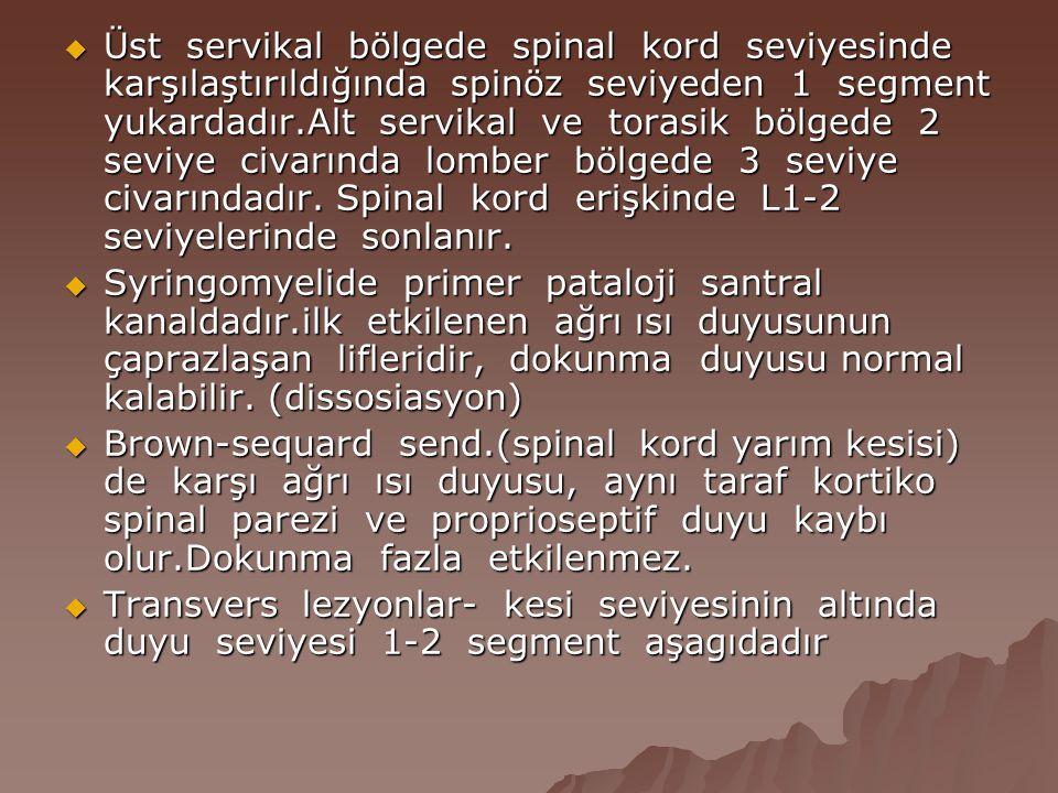  Üst servikal bölgede spinal kord seviyesinde karşılaştırıldığında spinöz seviyeden 1 segment yukardadır.Alt servikal ve torasik bölgede 2 seviye civ