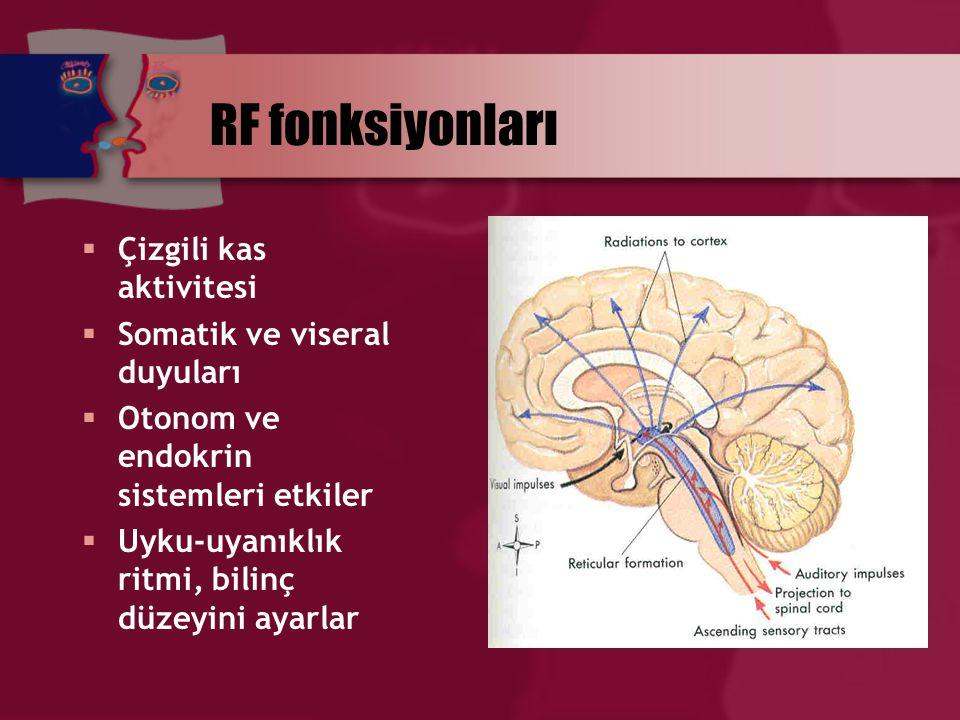 RF fonksiyonları  Çizgili kas aktivitesi  Somatik ve viseral duyuları  Otonom ve endokrin sistemleri etkiler  Uyku-uyanıklık ritmi, bilinç düzeyin