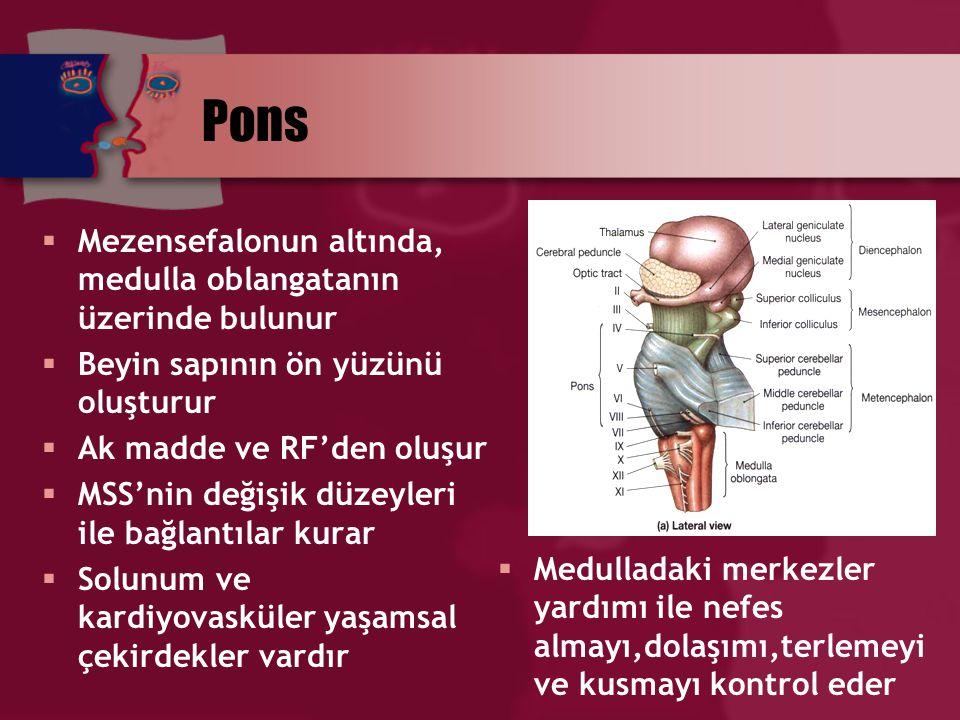Mezensefalon (Orta beyin)  Beynin en dar bölümüdür  İnen çıkan yolların oluşturduğu ak madde ile RF'dan oluşur  Görme, işitme refleks merkezleri (colliculi)  Bazal ganglionlardan bazıları  Kafa çifti çekirdeklerini içerir