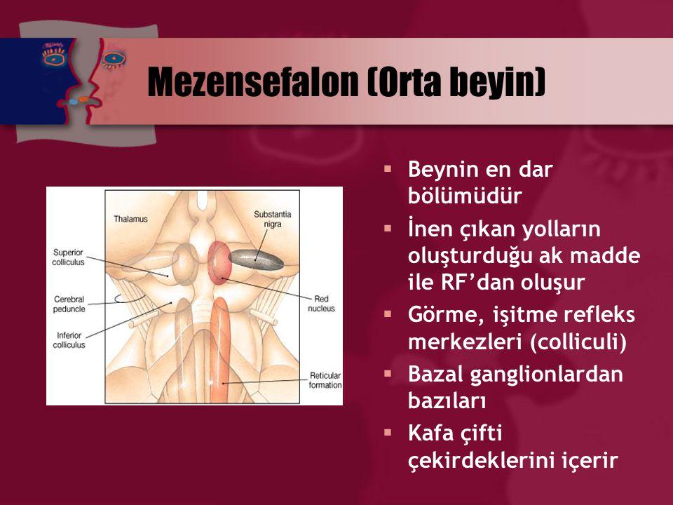 Mezensefalon (Orta beyin)  Beynin en dar bölümüdür  İnen çıkan yolların oluşturduğu ak madde ile RF'dan oluşur  Görme, işitme refleks merkezleri (c