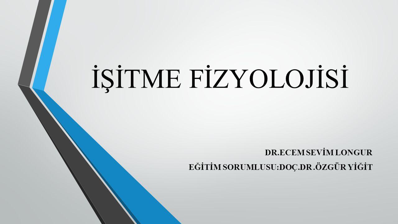 İŞİTME FİZYOLOJİSİ DR.ECEM SEVİM LONGUR EĞİTİM SORUMLUSU:DOÇ.DR.ÖZGÜR YİĞİT