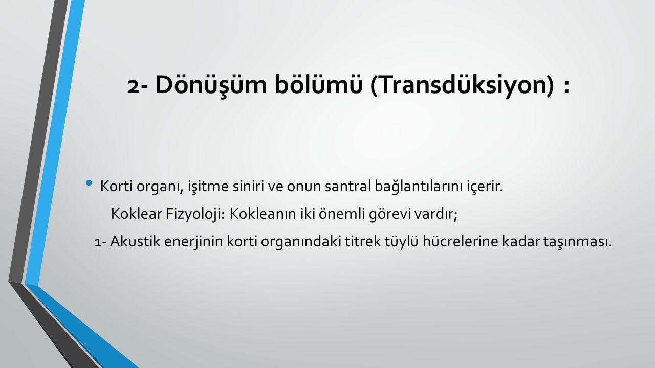 2- Dönüşüm bölümü (Transdüksiyon) : Korti organı, işitme siniri ve onun santral bağlantılarını içerir. Koklear Fizyoloji: Kokleanın iki önemli görevi
