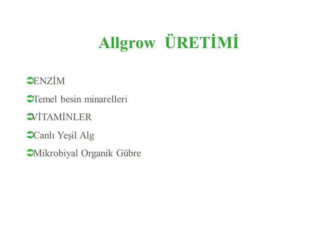 Allgrow ÜRETİMİ  ENZİM  Temel besin minarelleri  VİTAMİNLER  Canlı Yeşil Alg  Mikrobiyal Organik Gübre