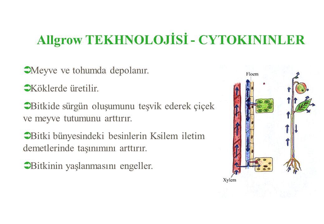 Allgrow TEKHNOLOJİSİ - CYTOKININLER  Meyve ve tohumda depolanır.  Köklerde üretilir.  Bitkide sürgün oluşumunu teşvik ederek çiçek ve meyve tutumun