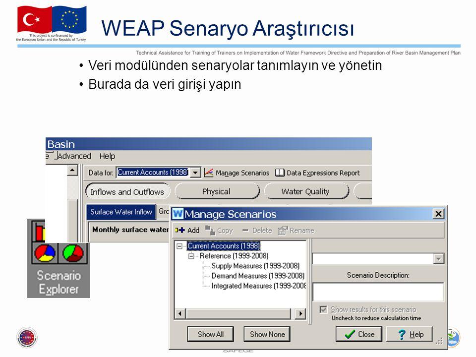 WEAP Senaryo Araştırıcısı Veri modülünden senaryolar tanımlayın ve yönetin Burada da veri girişi yapın