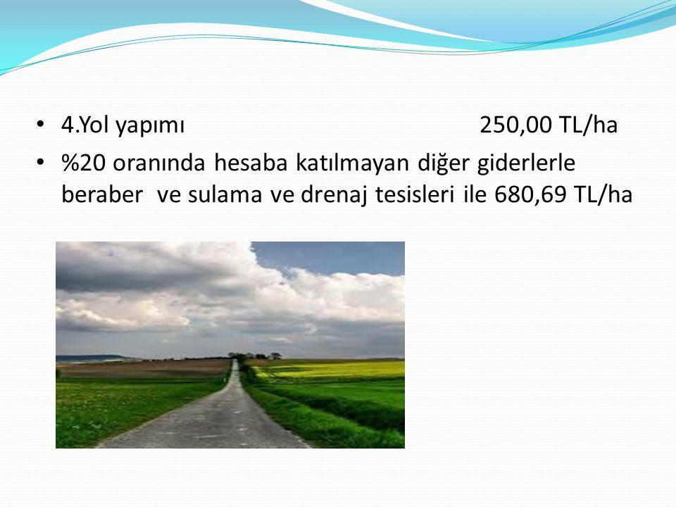 4.Yol yapımı 250,00 TL/ha %20 oranında hesaba katılmayan diğer giderlerle beraber ve sulama ve drenaj tesisleri ile 680,69 TL/ha