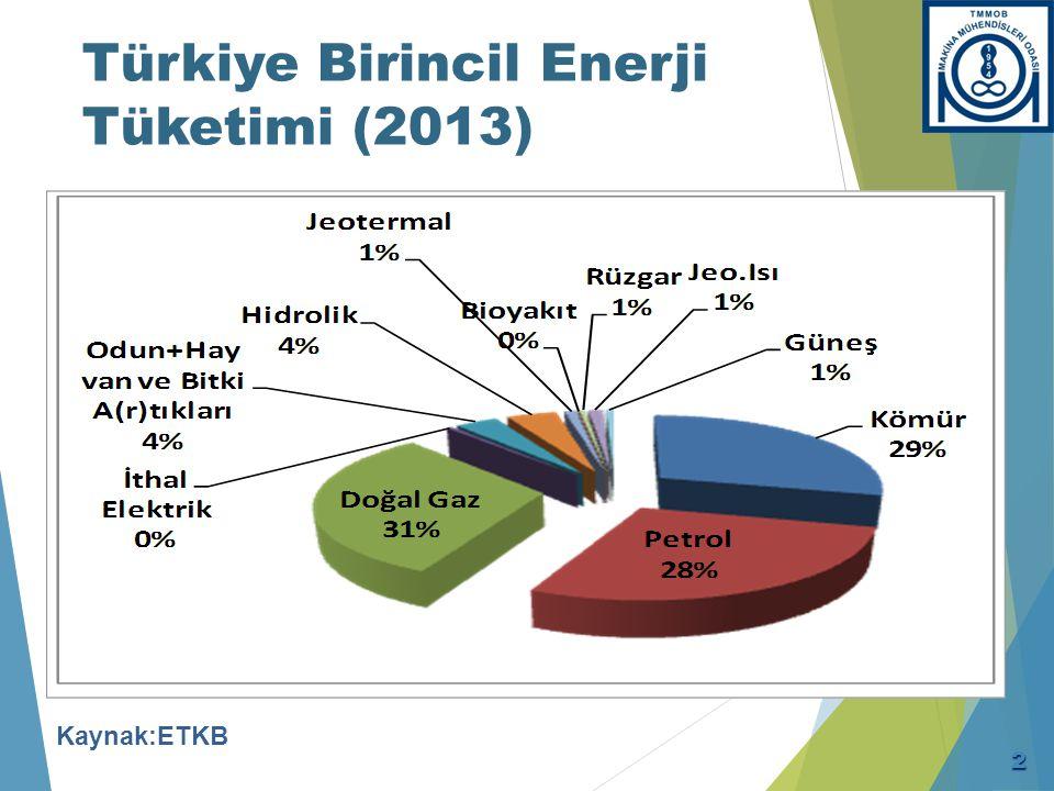 Türkiye Birincil Enerji Tüketimi (2013) Kaynak:ETKB 2