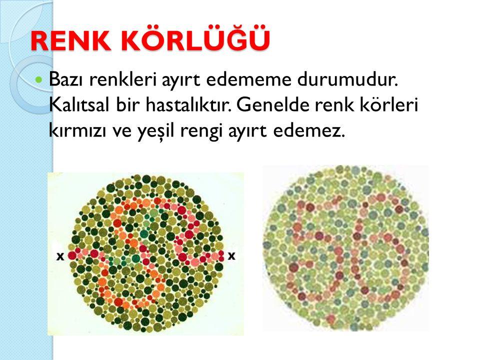 RENK KÖRLÜ Ğ Ü Bazı renkleri ayırt edememe durumudur. Kalıtsal bir hastalıktır. Genelde renk körleri kırmızı ve yeşil rengi ayırt edemez.