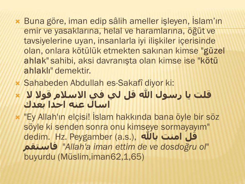  Buna göre, iman edip sâlih ameller işleyen, İslam'ın emir ve yasaklarına, helal ve haramlarına, öğüt ve tavsiyelerine uyan, insanlarla iyi ilişkiler