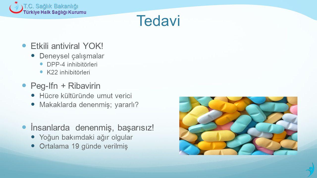 Türkiye Halk Sağlığı Kurumu T.C. Sağlık Bakanlığı Tedavi Etkili antiviral YOK! Deneysel çalışmalar DPP-4 inhibitörleri K22 inhibitörleri Peg-Ifn + Rib