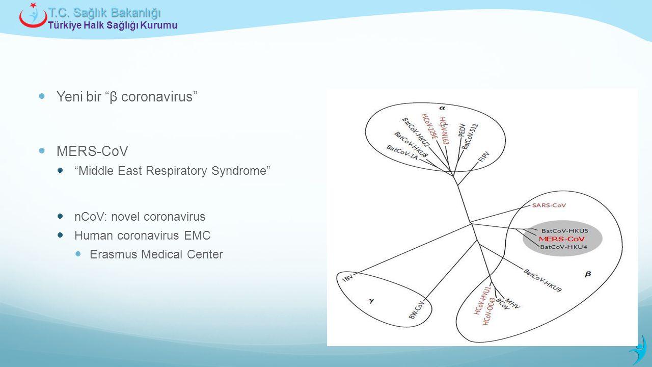 """Türkiye Halk Sağlığı Kurumu T.C. Sağlık Bakanlığı Yeni bir """"β coronavirus"""" MERS-CoV """"Middle East Respiratory Syndrome"""" nCoV: novel coronavirus Human c"""