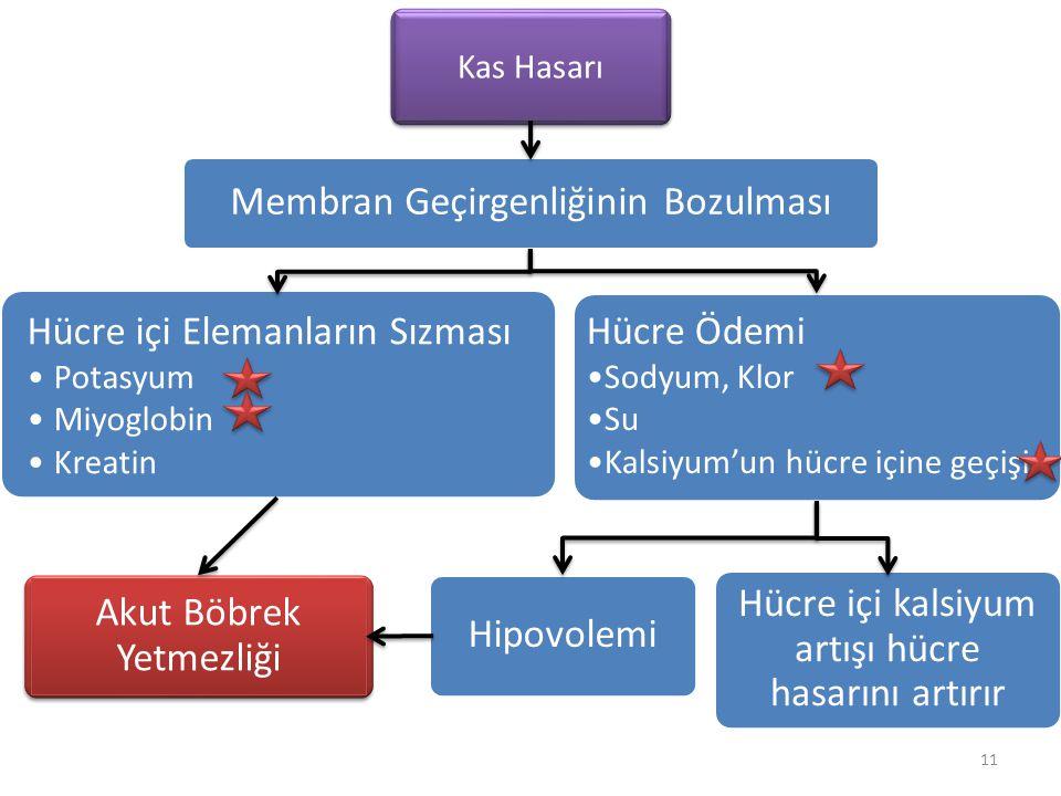 11 Kas Hasarı Membran Geçirgenliğinin Bozulması Hücre içi Elemanların Sızması Potasyum Miyoglobin Kreatin Hücre Ödemi Sodyum, Klor Su Kalsiyum'un hücr