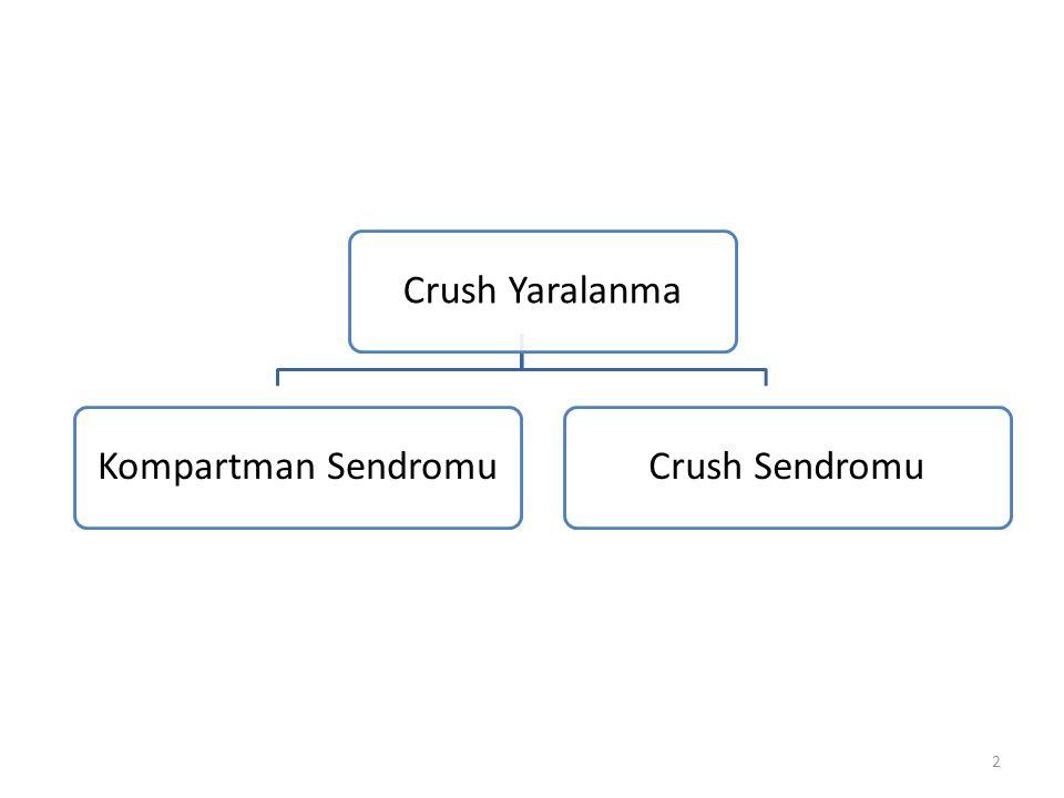 Crush YaralanmaKompartman SendromuCrush Sendromu 2