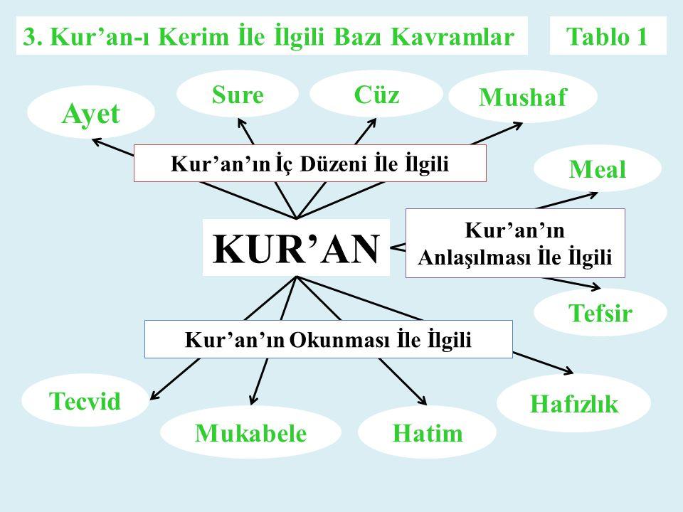 KUR'AN Ayet Mushaf CüzSure Hafızlık HatimMukabele Tecvid Meal Tefsir Kur'an'ın İç Düzeni İle İlgili Kur'an'ın Okunması İle İlgili Kur'an'ın Anlaşılmas
