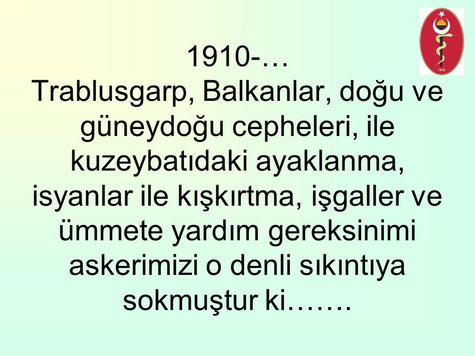 1910-… Trablusgarp, Balkanlar, doğu ve güneydoğu cepheleri, ile kuzeybatıdaki ayaklanma, isyanlar ile kışkırtma, işgaller ve ümmete yardım gereksinimi