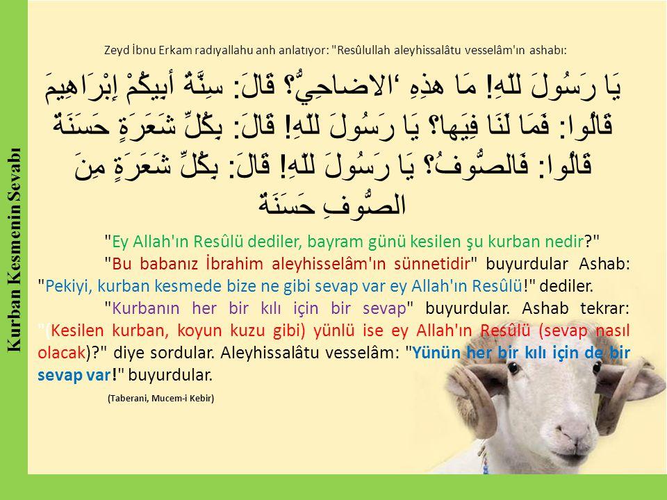 Zeyd İbnu Erkam radıyallahu anh anlatıyor: Resûlullah aleyhissalâtu vesselâm ın ashabı: يَا رَسُولَ للّهِ.