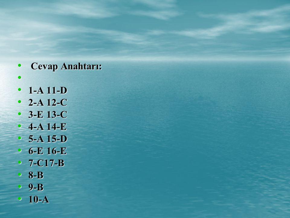 Cevap Anahtarı: Cevap Anahtarı: 1-A 11-D 1-A 11-D 2-A12-C 2-A12-C 3-E13-C 3-E13-C 4-A14-E 4-A14-E 5-A15-D 5-A15-D 6-E16-E 6-E16-E 7-C17-B 7-C17-B 8-B 8-B 9-B 9-B 10-A 10-A