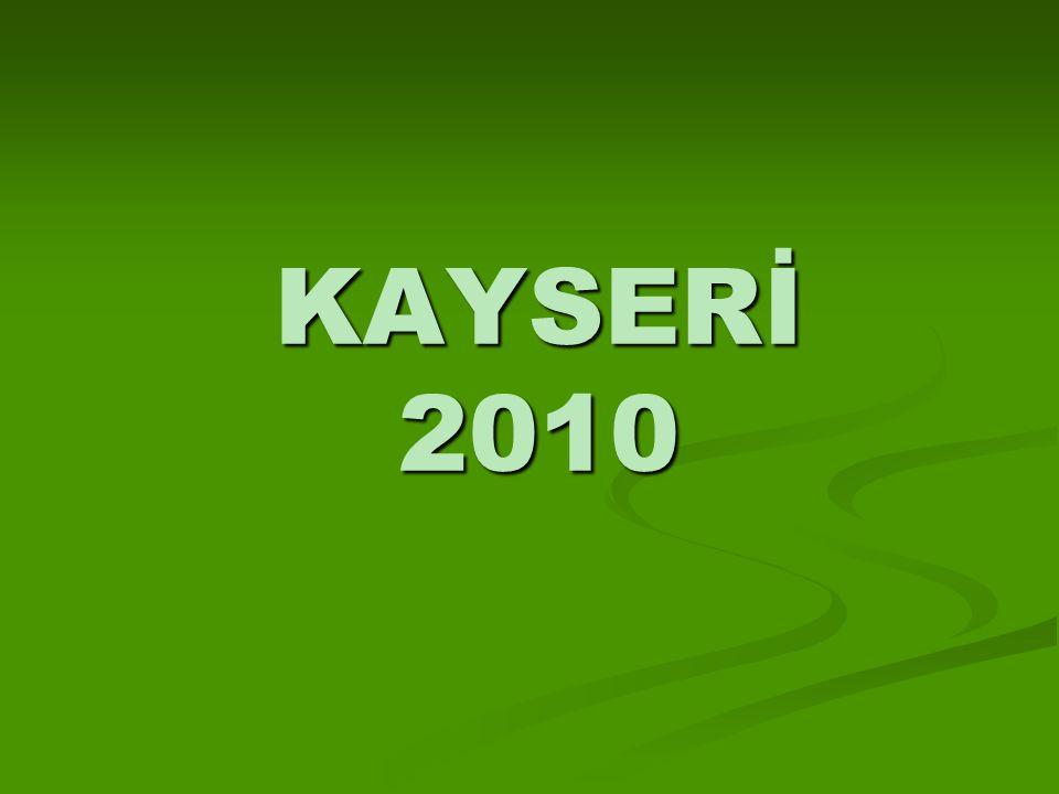 KAYSERİ 2010
