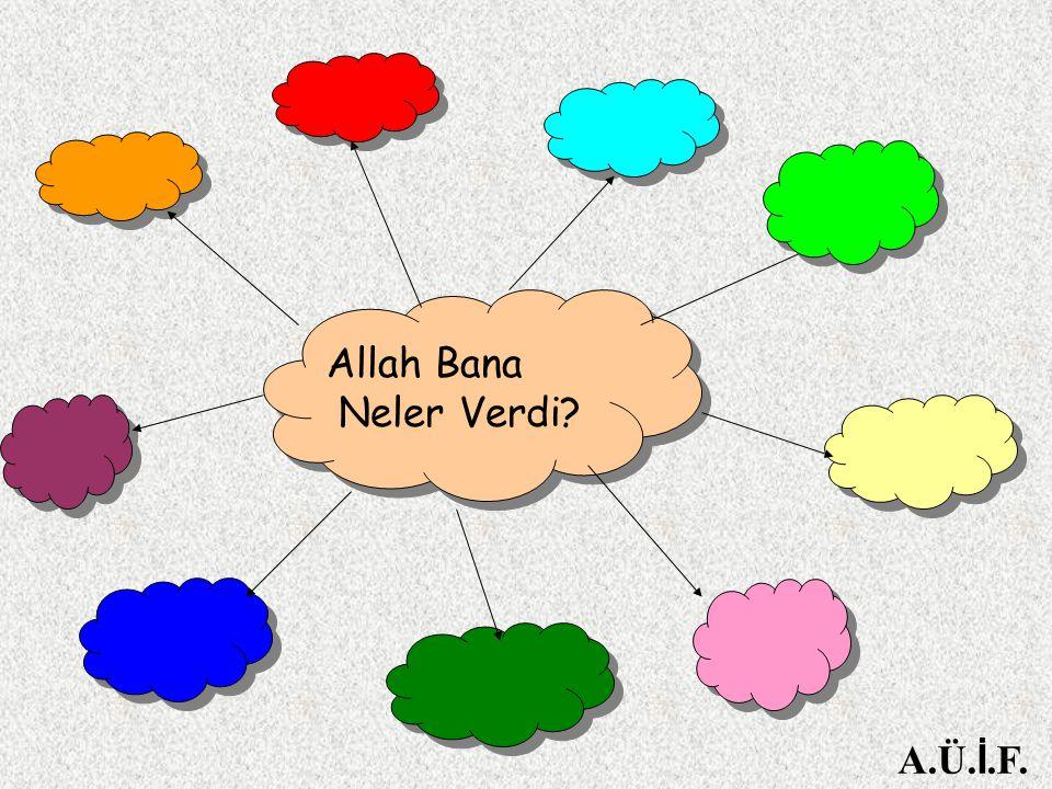Allah Bana Neler Verdi? A.Ü. İ.F.