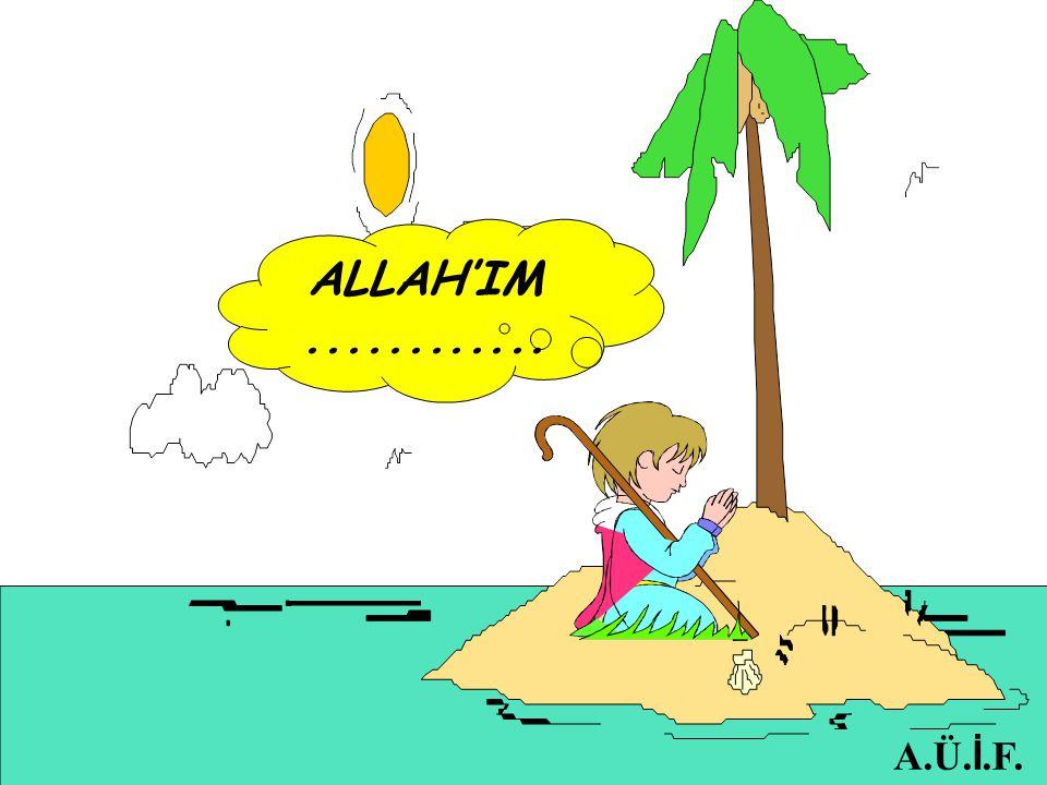 ALLAH'IM............ A.Ü. İ.F.