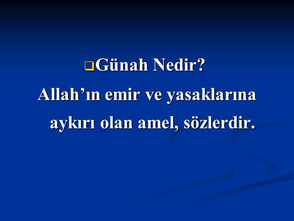  Günah Nedir?  Günah Nedir? Allah'ın emir ve yasaklarına aykırı olan amel, sözlerdir.