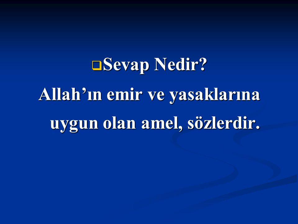  Sevap Nedir? Allah'ın emir ve yasaklarına uygun olan amel, sözlerdir.