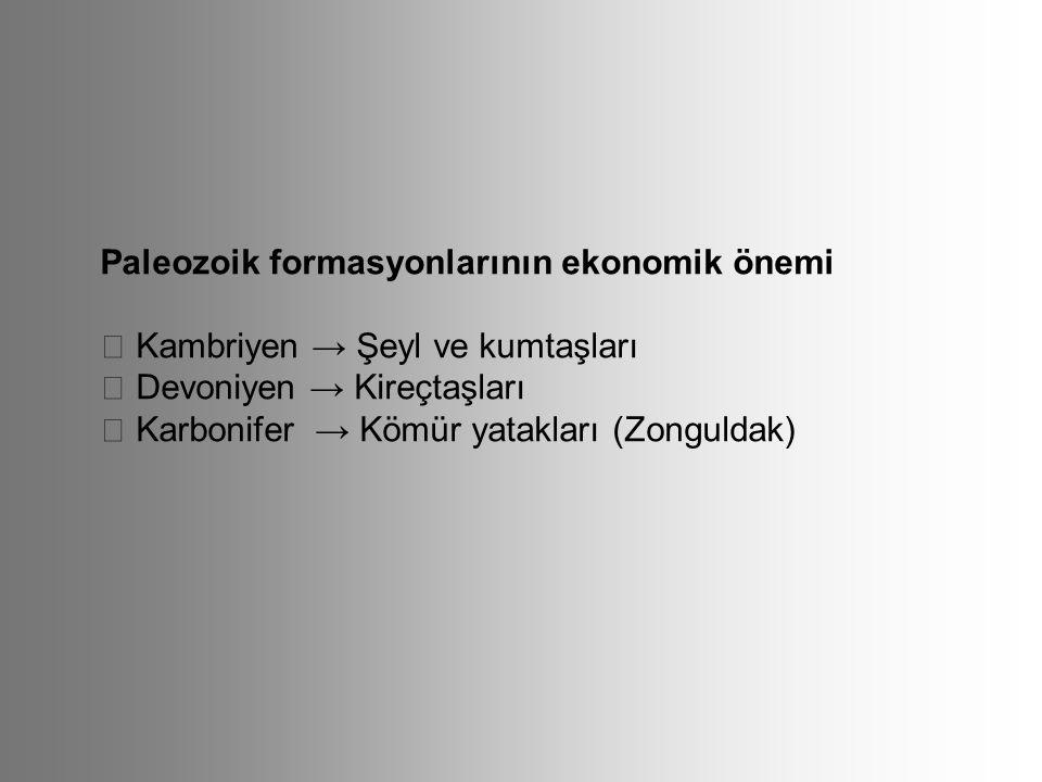 Paleozoik formasyonlarının ekonomik önemi  Kambriyen → Şeyl ve kumtaşları  Devoniyen → Kireçtaşları  Karbonifer → Kömür yatakları (Zonguldak)