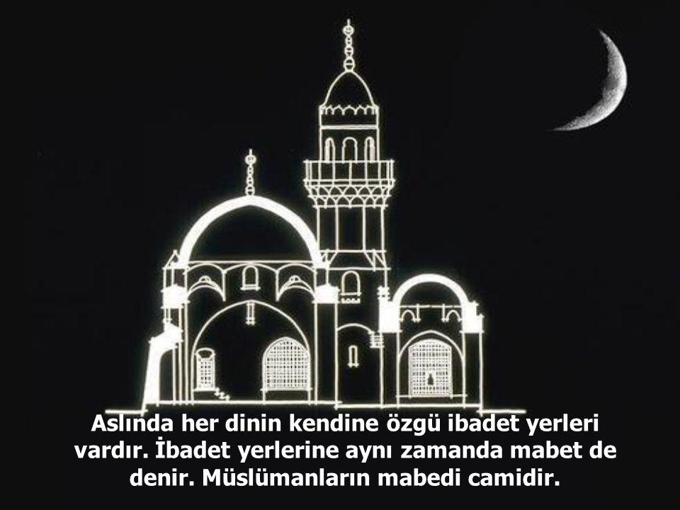 Aslında her dinin kendine özgü ibadet yerleri vardır.