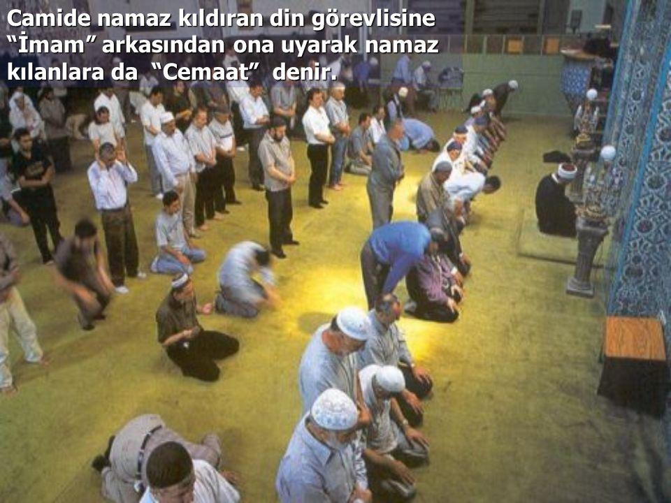 Camilerin birey ve toplum hayatında önemli bir yeri ve etkisi vardır.